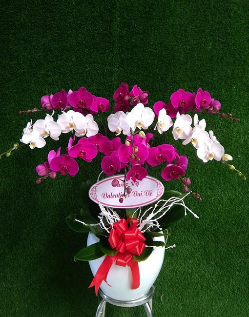 shop hoa tươi Diễn Xuân